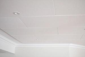 Ceiling detail in games room